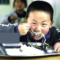 rice会编程