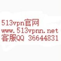 513vpn官网博客