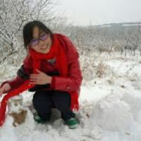 happycodinggirl