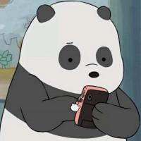 胖达panda