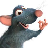 哇哦_老鼠