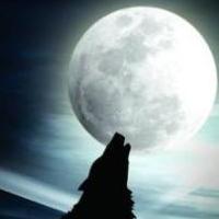 WolvesLeader
