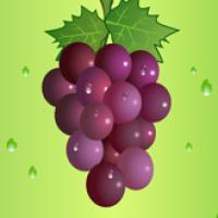 疯狂的葡萄